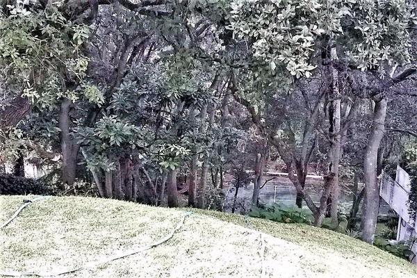 Foto de casa en venta en  , residencial campestre chiluca, atizapán de zaragoza, méxico, 7152758 No. 07