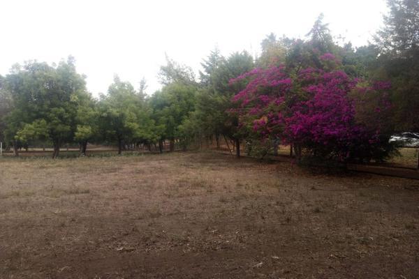 Foto de terreno habitacional en venta en residencial campestre la laguna , joyitas, villa de álvarez, colima, 0 No. 04