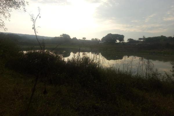 Foto de terreno habitacional en venta en residencial campestre la laguna , joyitas, villa de álvarez, colima, 0 No. 10