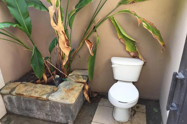 Foto de casa en renta en  , residencial lagunas de miralta, altamira, tamaulipas, 9931473 No. 10