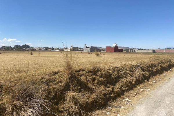 Foto de terreno habitacional en venta en  , residencial zinacantepec, zinacantepec, méxico, 0 No. 04