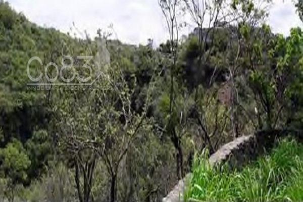 Foto de terreno habitacional en venta en retorno al vergel fraccionamiento b sur , chipitlán, cuernavaca, morelos, 0 No. 07