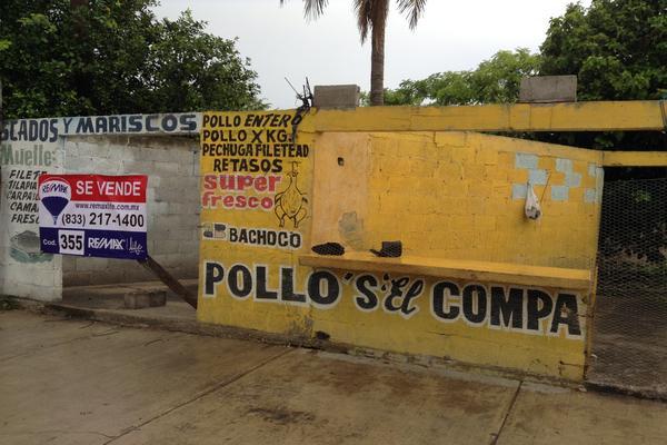 Foto de terreno comercial en venta en ricardo flores magón , revolución mexicana, pánuco, veracruz de ignacio de la llave, 3459980 No. 06