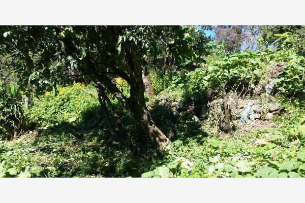 Foto de terreno habitacional en venta en  , rincón de estradas, valle de bravo, méxico, 6132306 No. 04