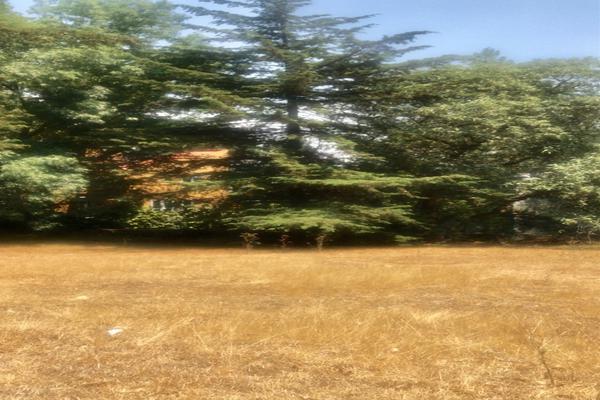 Foto de terreno habitacional en venta en rincon de las lomas , cuajimalpa, cuajimalpa de morelos, df / cdmx, 7242494 No. 03