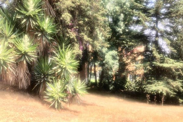 Foto de terreno habitacional en venta en rincon de las lomas , cuajimalpa, cuajimalpa de morelos, df / cdmx, 7242494 No. 04