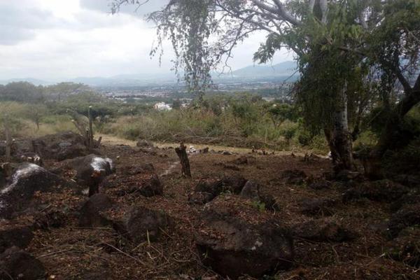 Foto de terreno habitacional en venta en  , rincón tarasco, morelia, michoacán de ocampo, 5874525 No. 06