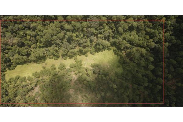 Foto de terreno habitacional en venta en  , rincón villa del valle, valle de bravo, méxico, 9304456 No. 02