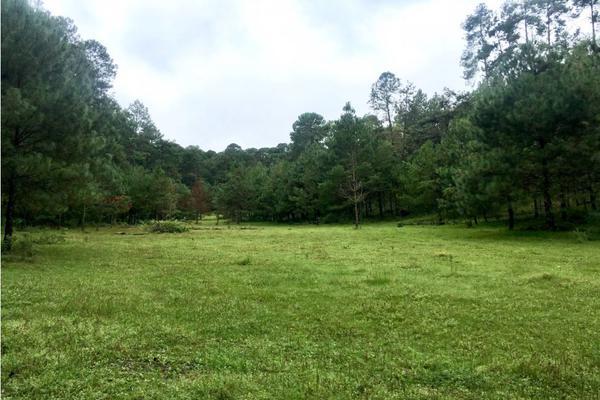 Foto de terreno habitacional en venta en  , rincón villa del valle, valle de bravo, méxico, 9304456 No. 08