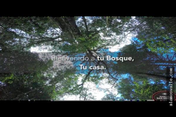 Foto de terreno habitacional en venta en  , rincón villa del valle, valle de bravo, méxico, 9305192 No. 05