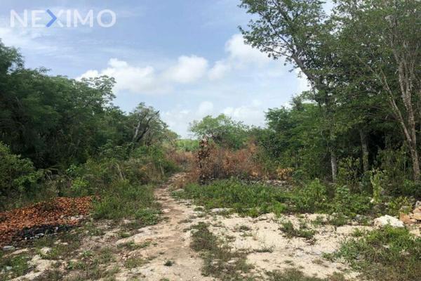 Foto de terreno industrial en venta en rinconada de las chachalacas , alfredo v bonfil, benito juárez, quintana roo, 8235253 No. 04