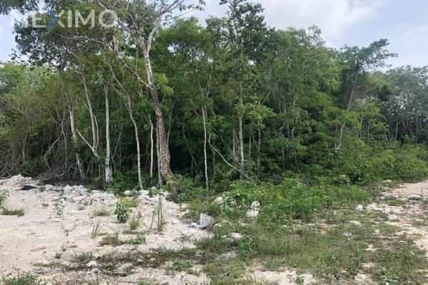 Foto de terreno industrial en venta en rinconada de las chachalacas , alfredo v bonfil, benito juárez, quintana roo, 8235253 No. 05