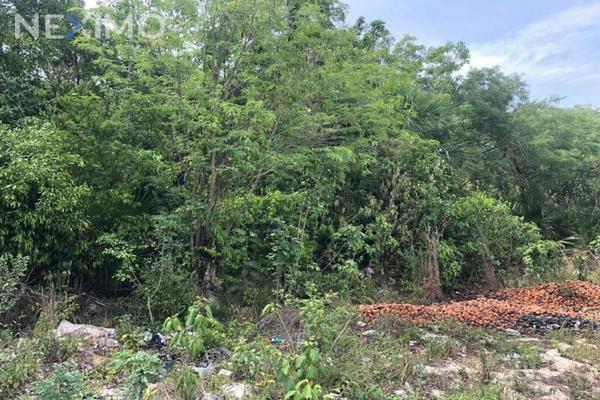 Foto de terreno industrial en venta en rinconada de las chachalacas , alfredo v bonfil, benito juárez, quintana roo, 8235253 No. 06