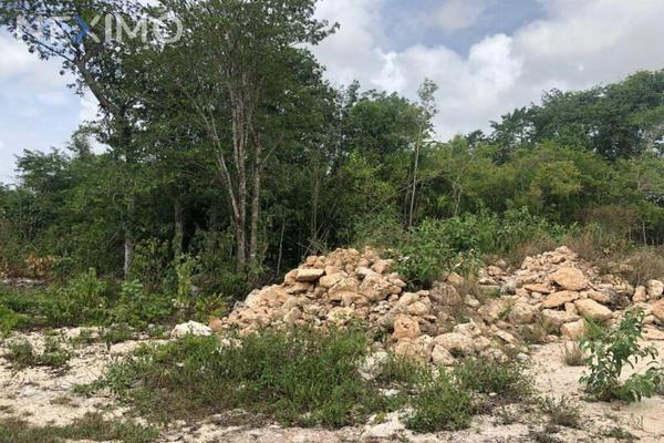 Foto de terreno industrial en venta en rinconada de las chachalacas , alfredo v bonfil, benito juárez, quintana roo, 8235253 No. 11