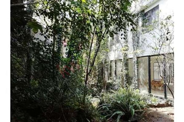 Foto de casa en venta en  , rinconada de los reyes, coyoacán, df / cdmx, 12267740 No. 05