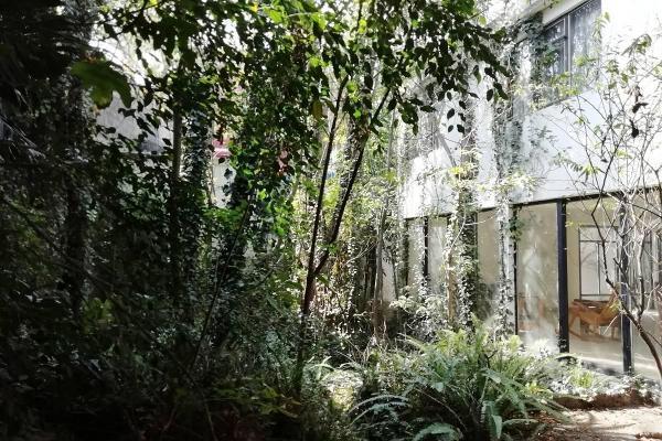 Foto de casa en venta en  , rinconada de los reyes, coyoacán, df / cdmx, 14036747 No. 01