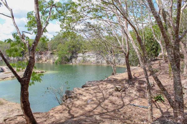 Foto de terreno habitacional en venta en  , rinconada santa maría, benito juárez, quintana roo, 18332148 No. 05