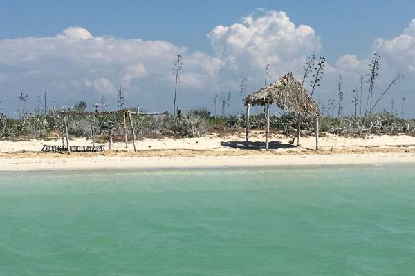 Foto de terreno comercial en venta en  , rio lagartos, río lagartos, yucatán, 3036219 No. 03