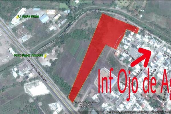 Foto de terreno habitacional en venta en  , r?o verde centro, rioverde, san luis potos?, 3221531 No. 01