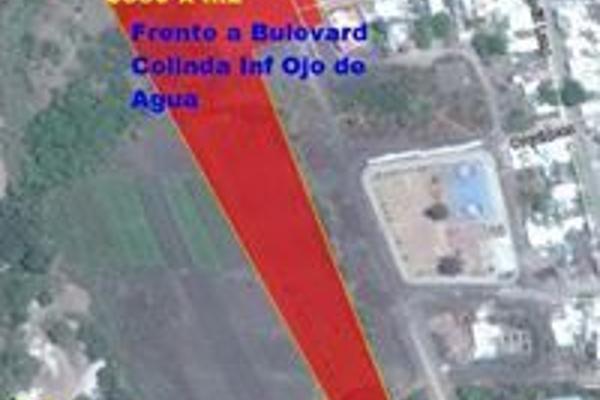 Foto de terreno habitacional en venta en  , r?o verde centro, rioverde, san luis potos?, 3221531 No. 04