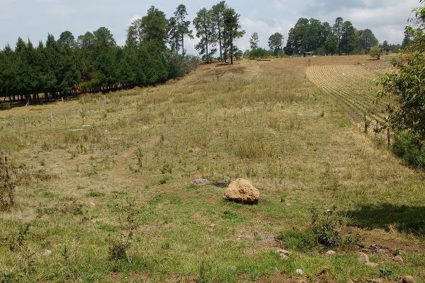 Foto de terreno habitacional en venta en rosa de castilla , san bartolo, amanalco, méxico, 4632405 No. 01