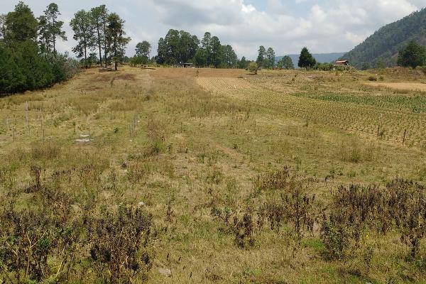 Foto de terreno habitacional en venta en rosa de castilla , san bartolo, amanalco, méxico, 4632405 No. 03