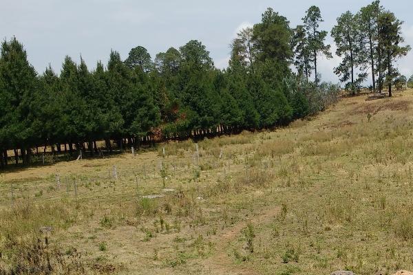 Foto de terreno habitacional en venta en rosa de castilla , san bartolo, amanalco, méxico, 4632405 No. 04