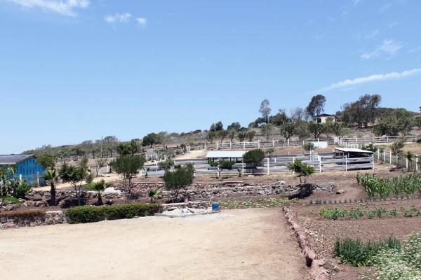 Foto de rancho en venta en  , colinas de rosarito 1a. sección, playas de rosarito, baja california, 5434026 No. 02