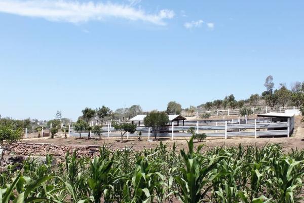 Foto de rancho en venta en  , colinas de rosarito 1a. sección, playas de rosarito, baja california, 5434026 No. 03