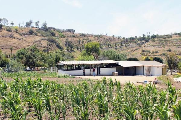 Foto de rancho en venta en  , colinas de rosarito 1a. sección, playas de rosarito, baja california, 5434026 No. 04