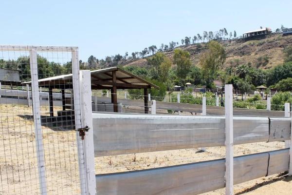 Foto de rancho en venta en  , colinas de rosarito 1a. sección, playas de rosarito, baja california, 5434026 No. 10