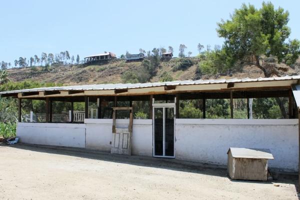 Foto de rancho en venta en  , colinas de rosarito 1a. sección, playas de rosarito, baja california, 5434026 No. 12