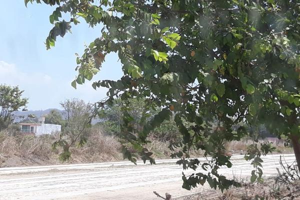 Foto de terreno habitacional en venta en rubi s/n , salahua, manzanillo, colima, 5289840 No. 02