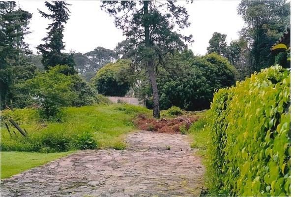 Foto de terreno habitacional en venta en ruta del bosque , avándaro, valle de bravo, méxico, 12276178 No. 12