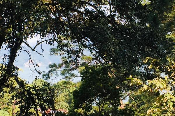 Foto de terreno habitacional en venta en ruta del lago , avándaro, valle de bravo, méxico, 8867611 No. 01