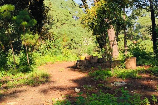 Foto de terreno habitacional en venta en ruta del lago , avándaro, valle de bravo, méxico, 8867611 No. 02