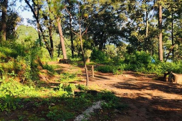 Foto de terreno habitacional en venta en ruta del lago , avándaro, valle de bravo, méxico, 8867611 No. 05