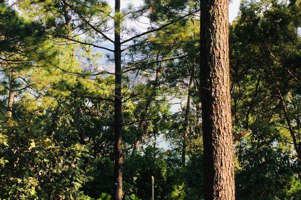 Foto de terreno habitacional en venta en ruta del lago , avándaro, valle de bravo, méxico, 8867611 No. 07