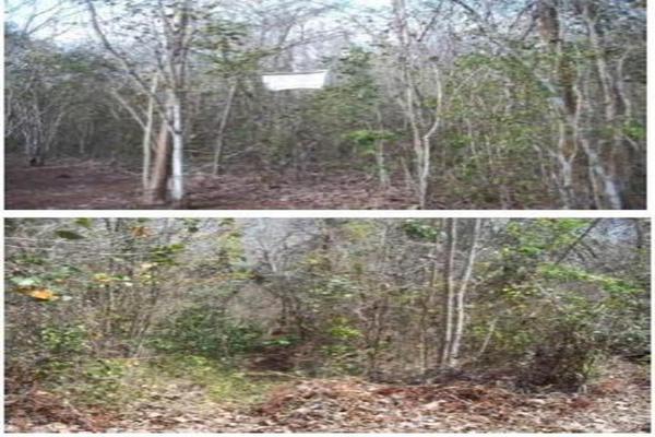 Foto de terreno habitacional en venta en  , saban, josé maría morelos, quintana roo, 10482223 No. 09