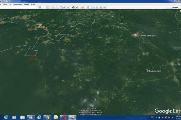 Foto de terreno habitacional en venta en  , saban, josé maría morelos, quintana roo, 10482223 No. 12