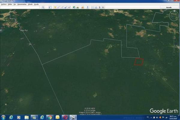 Foto de terreno habitacional en venta en  , saban, josé maría morelos, quintana roo, 10482223 No. 13