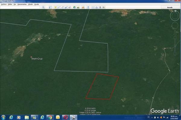 Foto de terreno habitacional en venta en  , saban, josé maría morelos, quintana roo, 10482223 No. 14