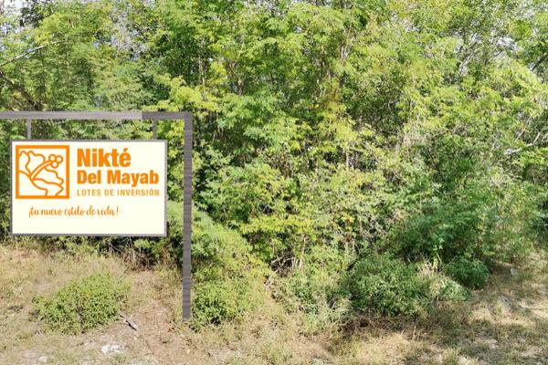 Foto de terreno habitacional en venta en  , sac-nicte, mérida, yucatán, 14028713 No. 11