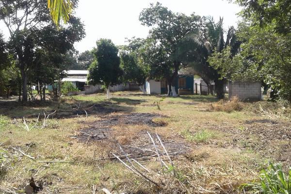Foto de terreno habitacional en venta en salvador gonzález , salmoral, la antigua, veracruz de ignacio de la llave, 8867340 No. 04