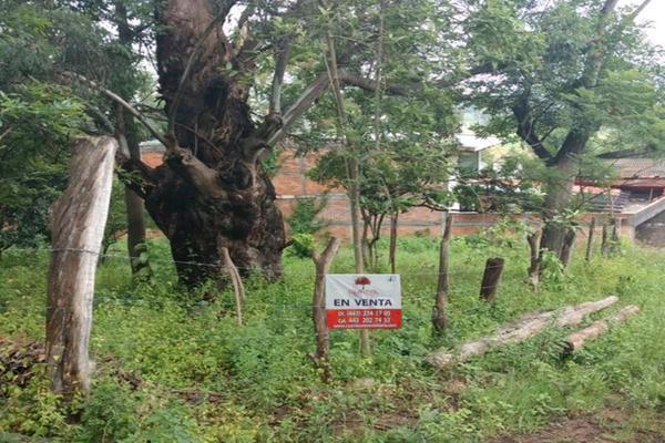 Foto de terreno habitacional en venta en - -, salvador iriarte montes, morelia, michoacán de ocampo, 3632927 No. 01