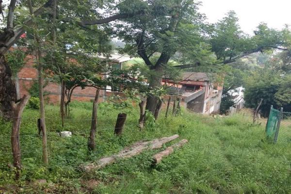 Foto de terreno habitacional en venta en - -, salvador iriarte montes, morelia, michoacán de ocampo, 3632927 No. 03
