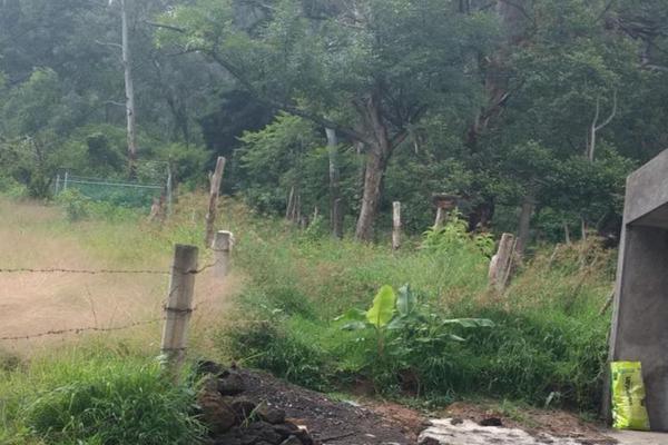 Foto de terreno habitacional en venta en - -, salvador iriarte montes, morelia, michoacán de ocampo, 3632927 No. 07