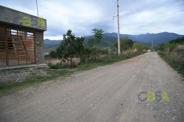 Foto de terreno habitacional en venta en  , san andres huayapam, san andrés huayápam, oaxaca, 0 No. 01