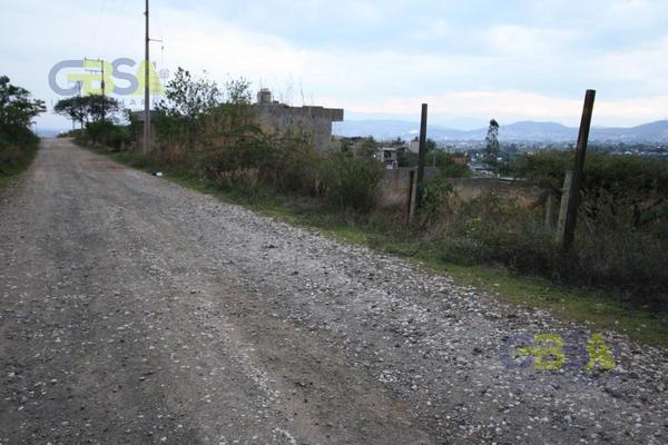 Foto de terreno habitacional en venta en  , san andres huayapam, san andrés huayápam, oaxaca, 0 No. 04