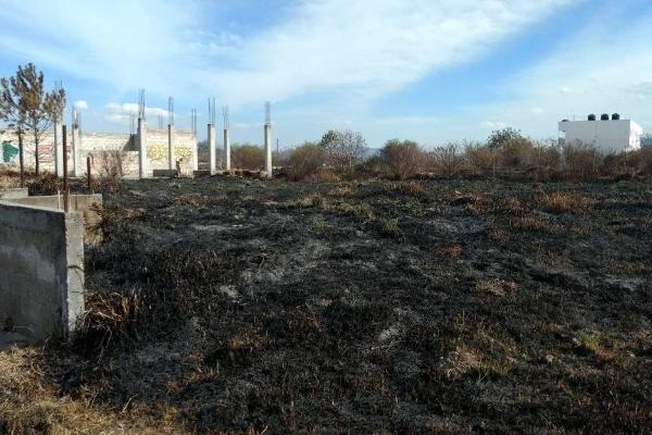 Foto de terreno comercial en venta en  , san andrés ocotlán, calimaya, méxico, 3426549 No. 05